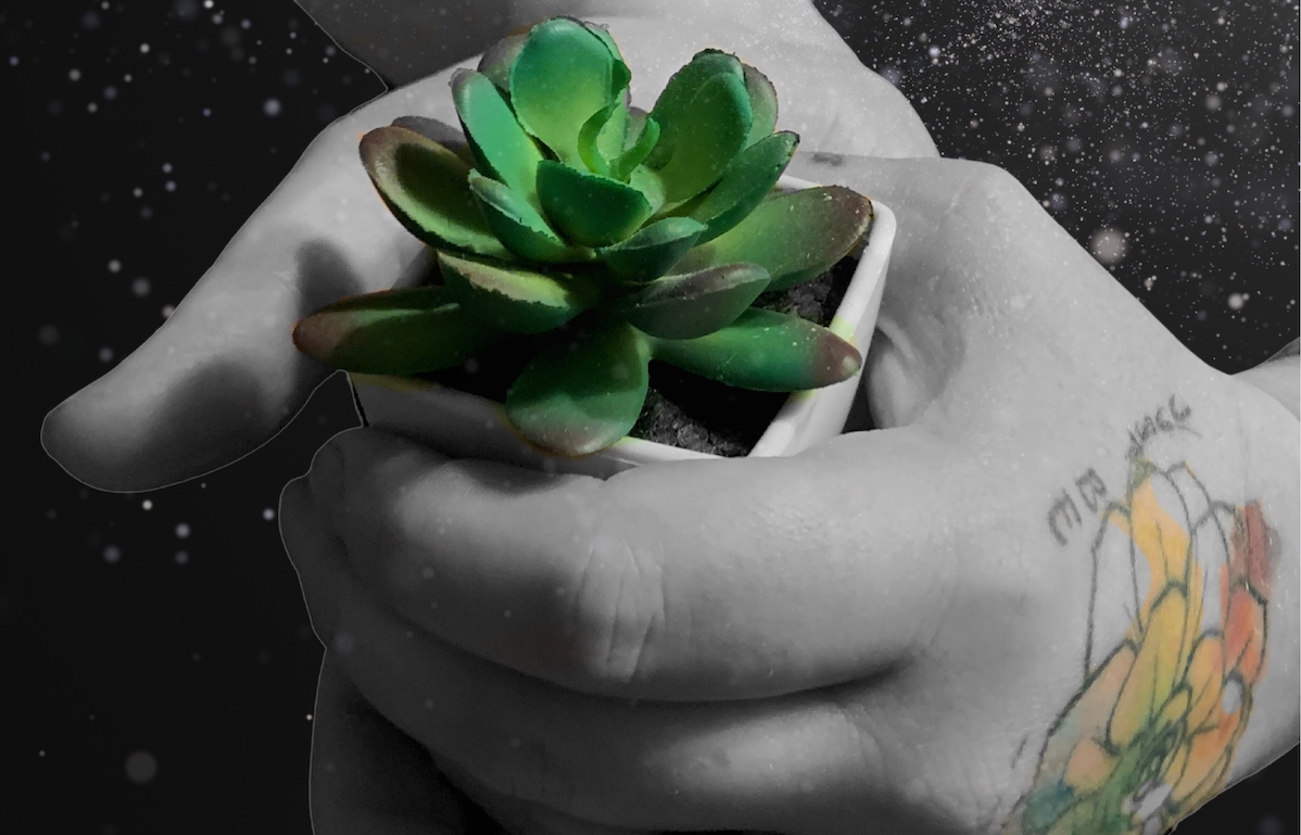 Just Be Promo with hand and small succulent